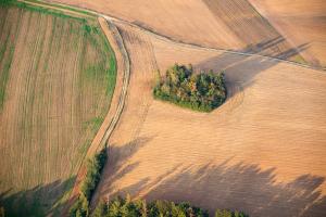 Podzimní pole na Vysočině